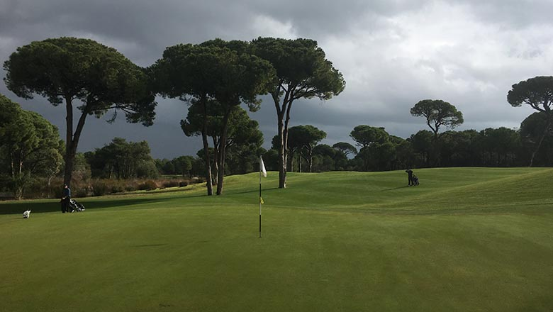 article-blog-golfy-top-ten-greenkeepers-2019-cornelia.2 Top Ten Greenkeepers : des retours d'Antalya !