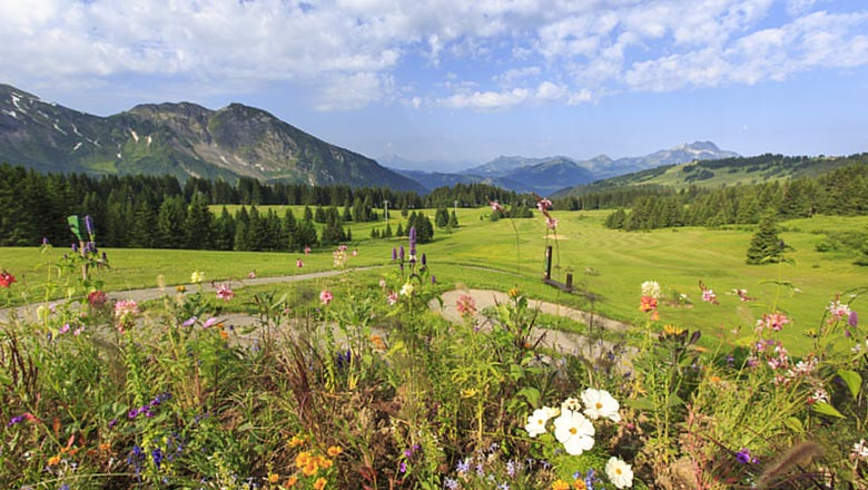 article-blog-golfy-morzine-avoriaz-6 Golf d'Avoriaz Morzine : on passe au vert...